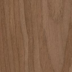 PS Walnut Echo Wood